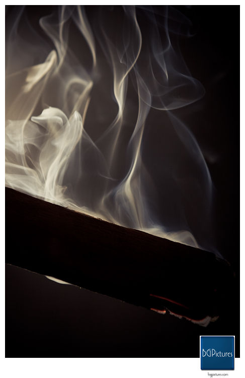 Cigar Art - Cedar Smoke 1of6 - CigarObsession - The best ...